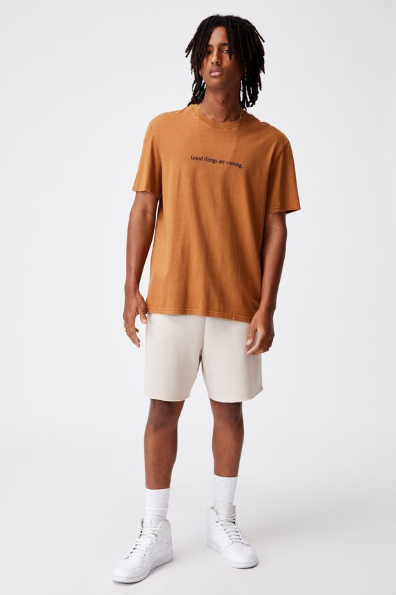 Regular Graphic T Shirt, WASHED TOBACCO/GOOD THINGS