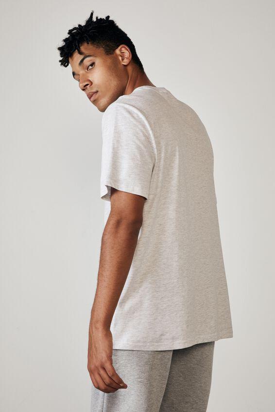 Regular Graphic T Shirt, SILVER MARLE/CALABASAS