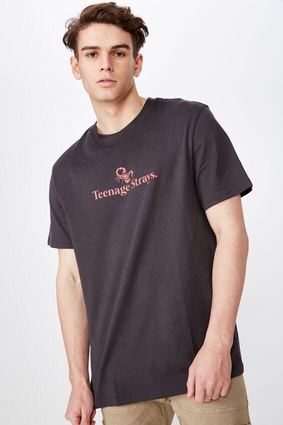 Regular Graphic T Shirt, OBSIDIAN/TEEN STRAYS