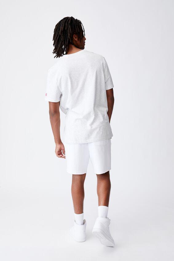 Regular Pop Culture T Shirt, LCN NAS SILVER MARLE/NASA STRIPE
