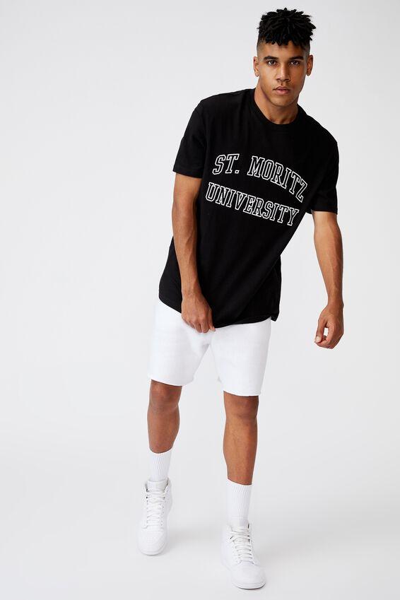 Regular Graphic T Shirt, BLACK/ST MORITZ
